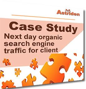 Santa Cruz SEO Google search engine result of website page after optimization.