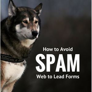 Image showing danger of web to lead spam when using Salesforce