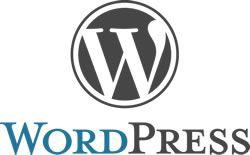 Wordpress custom CMS developed by wordpress developers